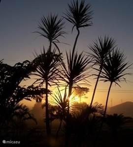 Deze foto is gemaakt vanaf het terras bij de entree. Het zal zeker ook uw favoriete plaatsje worden tussen 07.00 en 08.00 uur. De zonsopkomst is daar geweldig. En écht..u bent wakker rond die tijd hoor. Zeker de eerste week na aankomst in Florida.