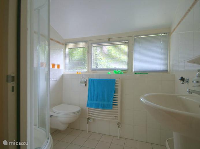 De gastenbadkamer met veel lichtinval.