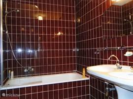 Badkamer ligbad/douche, wastafel en splinternieuw (2012) hangend tweede toilet.