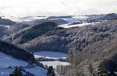 landschap in sneeuw.
