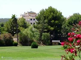 Het appartement gezien vanaf de golfbaan Campoamor. Het appartement zelf ligt op de golfbaan Las Ramblas. U heeft als enthousiast golfer twee 18-holes golfbanen tot uw beschikking.