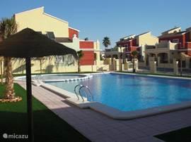 Het gemeenschappelijk zwembad met een geïntegreerd kinderbad. Om het zwembad bevinden zich vaste parasols en ligt er kunstgras om te zonnebaden.