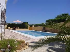 Vanuit de tuin is het zwembad bereikbaar. Rondom het zwembad zijn vele mogelijkheden tot terras in zon en schaduw.