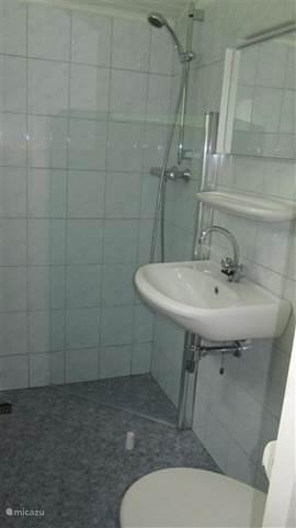 Badkamer met inloopdouche met klapwand, toilet en wastafel.