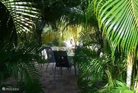 Terras in de bloemen en palmentuin, lekker op de wind gelegen en door de bloemen en palmen toch alle privacy, met toch een mooi uitzicht over het resort en de Mondi