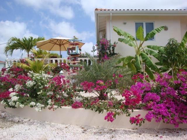 Vacation rental Curaçao, Banda Ariba (East), Jan Thiel Villa Villa Fancy