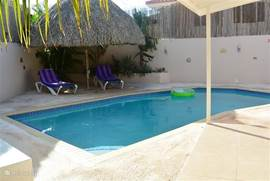Het Zwembad, heerlijk afkoelen, lekker chillen met een luchtbed op het water. Onder de Palapa achter in de tuin is het schaduwrijk, relaxen maar!!!