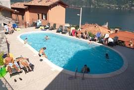 Het zwembad met zonneterras met ligstoelen.