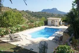 zwembad m/romeinse trap, rondom voldoende ruimte m/ligstoelen en buitendouche.