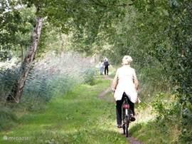 De prachtige natuur nodigt uit tot wandel en fietstochten waarin u kennis maakt met de prachtige Veluwe