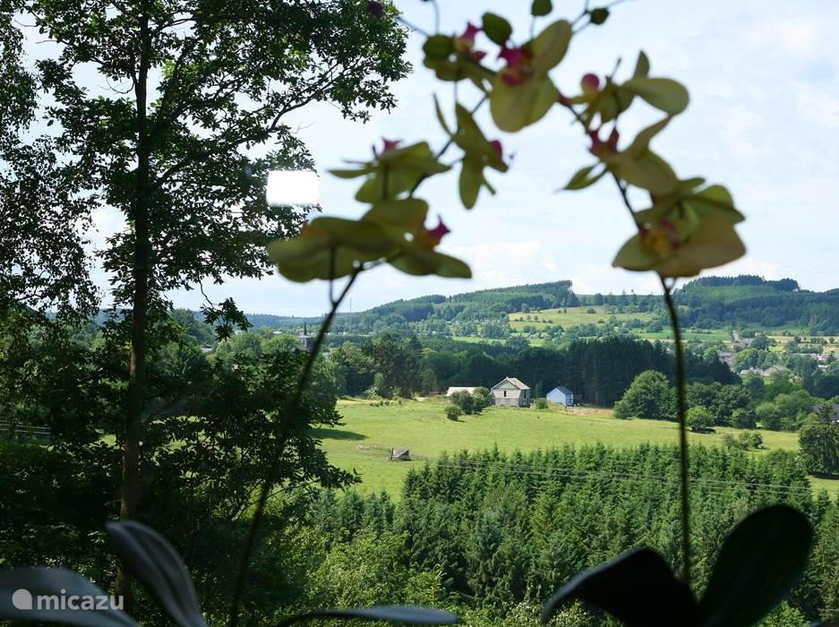 Vanuit het huis en op het terras kunt u van dit prachtige uitzicht genieten. U kunt kilometers ver over het dal kijken. In de verte hoort u ook nog een riviertje stromen. Dit alles zorgt ervoor dat u zich optimaal kunt ontspannen en zich over kunt geven aan de rust van de natuur.
