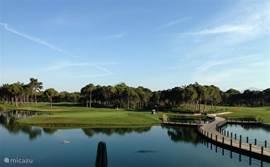 Meer dan 11 golfbanen binnen een straal van 5 kilometer.