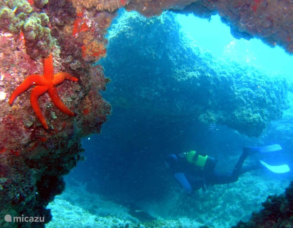 Moraira: diverse duik- en snorkelmogelijkheden. www,scubamoraira.com. Carretera Moraira-Calpe, 130