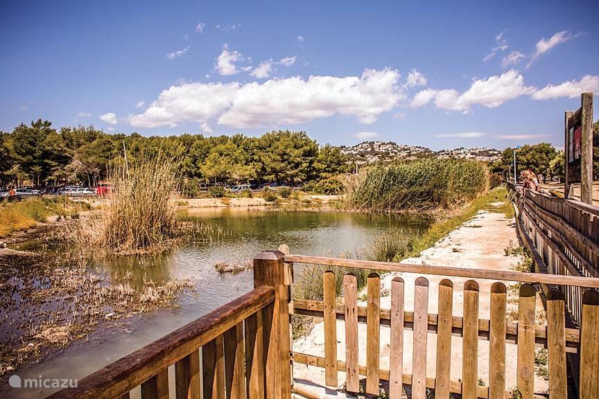 La Marjal del Senillar - moerasgebied bij Ampollastrand Moraira. Sinds 2004 beschermd natuurreservaat voor inheems diersoorten, waaronder de Spaanse Karper Aphanius iberus