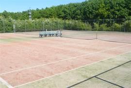 lekker tennisen op de baan van het park