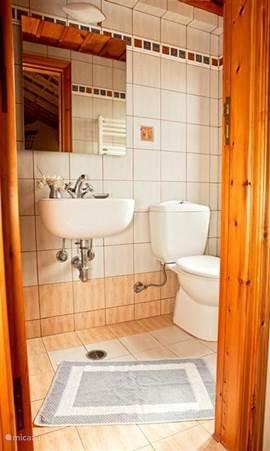 kleine badkamer bij Masterbedroom.