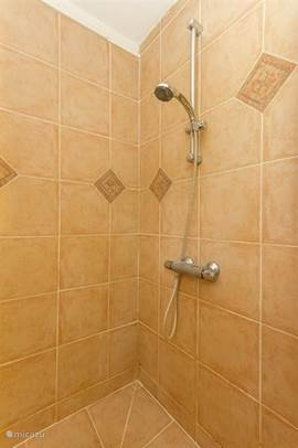 The bathroom has a large shower with thermostat.