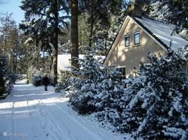 Ook in de winter is het trouwens goed toeven op het park. Haardje aan, wijntje open, goed boek erbij...