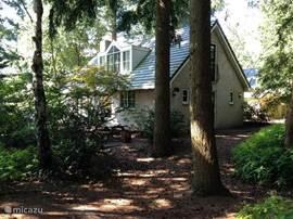 De achterzijde van de woning. Tussen de bomen kan de bijgeleverde tweepersoons hangmat worden opgehangen. Nog net zicht op de tweede terrastafel.
