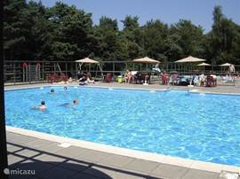 Zwembad met 2 aparte afgeschermde kinderbadjes en grasgazon met zitjes.
