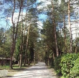 natuurrijk park