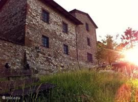 Karakteristieke Italiaanse villa, centraal gelegen in Italië net buiten het dorp Lisciano Niccone, op de grens van Umbrië en Toscane.