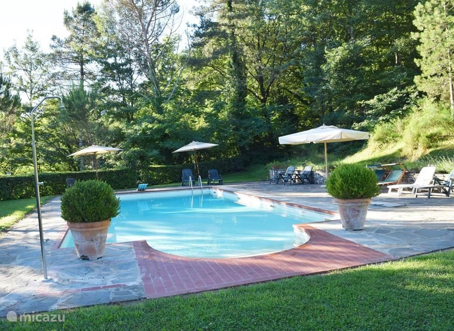 Groot zwembad aan de rand van het bos. Hoger gelegen dan het huis en de weg, dus totale privacy en uitzicht.