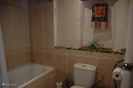 Rechter deel van de badkamer met toilet en ligbad.