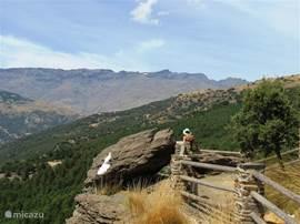 Wandelend hogerop in de bergen heb je o.a.uitzicht op de Mulhacen, de hoogste berg van Spanje