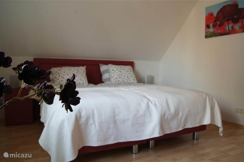 Rent Bed and Breakfast/vakantiehuis Ammeloe in Vreden, North Rhine Westphalia. - Micazu
