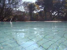 Het grote heerlijk verwarmde zwembad.