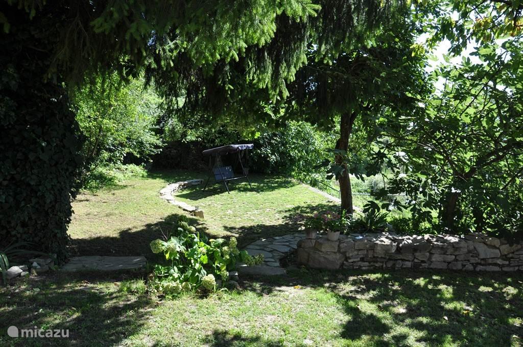 Kijkje in de oude moestuin, waar nog een kakiboom, een pruimenboom, vijgenbomen  en druiven staan. Ook is hier de trap naar het zwembad.