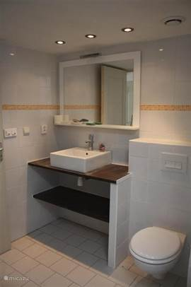 White bathroom with large walk-in shower with fixed shower head (type rain shower) and separate ventilation handdouche.Goede