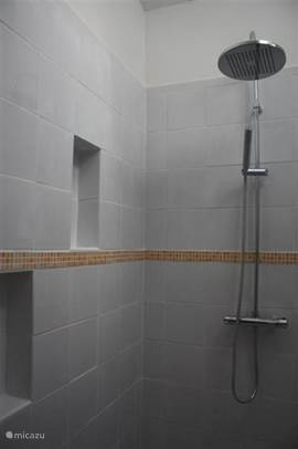 Large walk-in shower with rain shower in white bathroom