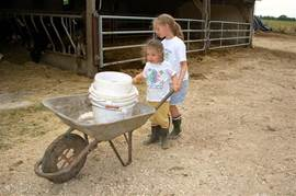 Great fun for children: help on the farm!