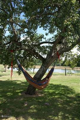 In the hammock under the pear tree in the garden. In the background the lake.