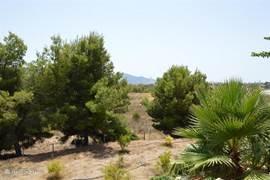 Uitzicht tuin en omgeving.