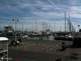 De haven van Benalmadena, 15 min met de auto, vele terrassen aan zee.