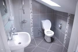 Moderne badkamer behorende bij de derde slaapkamer. Voorzien van eigen wastafel, douche en toilet en ook hier een zolderraam voor het daglicht