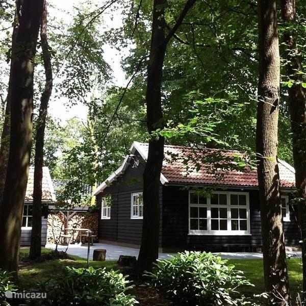 Vakantiehuis Nederland, Friesland, Appelscha vakantiehuis Boshuis Nij Hildenberg