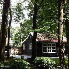 Een heerlijk Scandinavisch vakantiehuis in Friesland.
