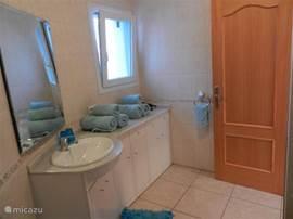 badkamer met lavabo/ligbed/toilet