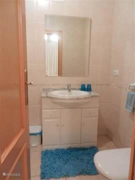 badkamer met lavabo, douche en toilet