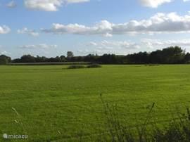 Prachtige wandel en fiets omgeving. Door Ommen loopt het Pieterpad !