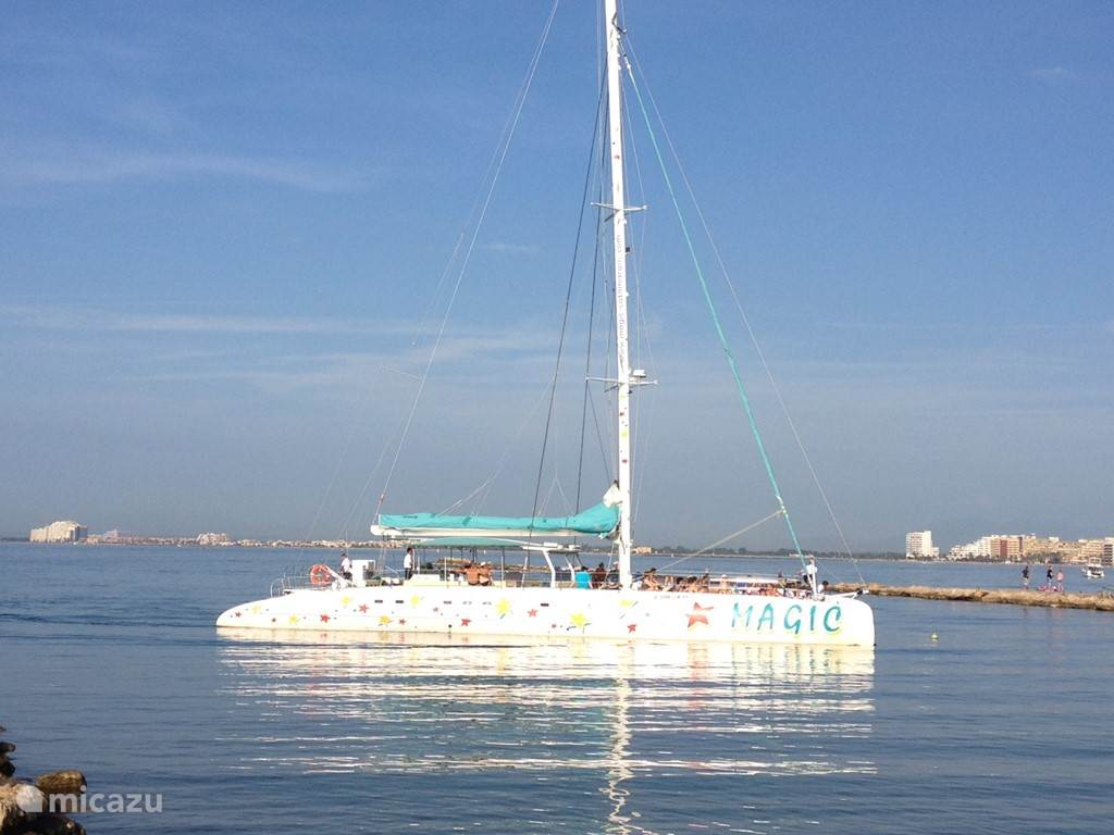 Catamaran Magic