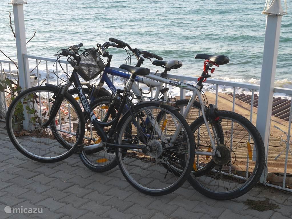 U kunt gebruik maken van de twee fietsen in Villa Selena. Langs de kust loopt een fietspad .