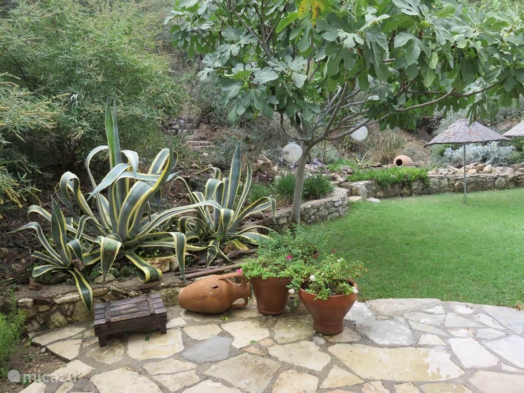De tuin achter het huis, grenzend aan Millipark.