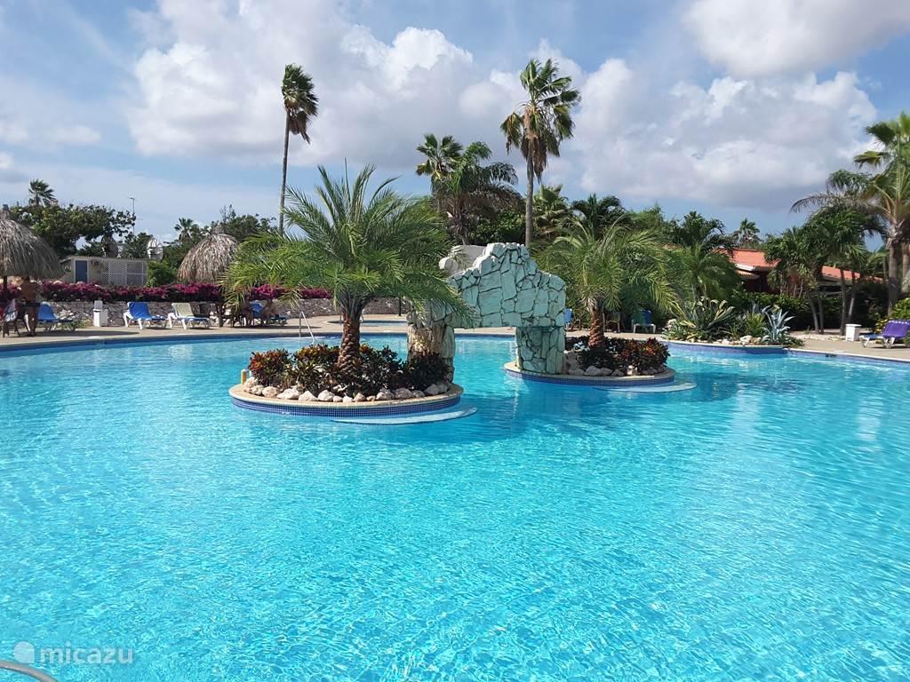 Prachtig pas gerenoveerd zwembad