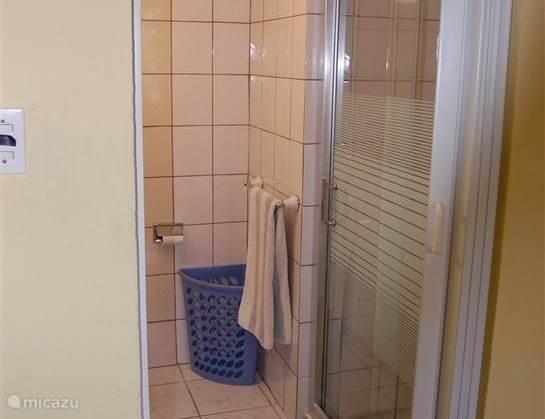 We hebben de oude kunststof douchedeuren vervangen door mooie glazen schuifdeuren.