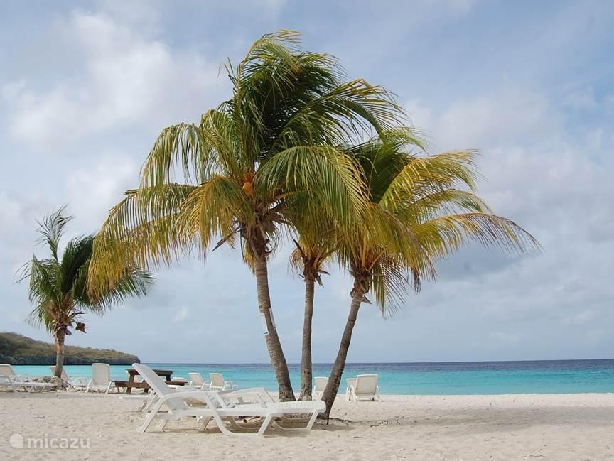 Cas Abou, ons favoriete strand. Maar dan 's ochtends vroeg, als het nog lekker rustig is!